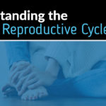 understanding-the-fungal-reproductive-cycle